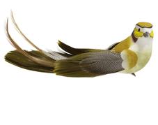 Fågel med clip, Grön/Gul